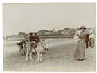 Marine terrace sands 1912[Photo]