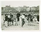 Sands Donkeys August 1932 [Photo]