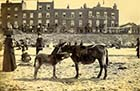 Marine Terrace Cinque Ports Arms, 2 July 1892 [Hobday] Margate History