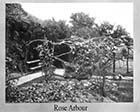 Ladies College Rose Arbour  | Margate History