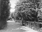 Holly Lane looking towards Foreland Avenue 1920s | Margate History