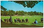 Dane Park cricket match  | Margate History