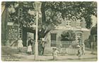 Dane Road Mulberry Tree 1909 Margate History