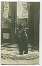 St Johns Road No 16 Bear outside door | Margate History