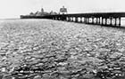 Jetty and Frozen Sea | Margate History
